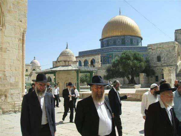 انظر ماذا يجري تحت بيت الله المسجد الاقصى  18112009-25